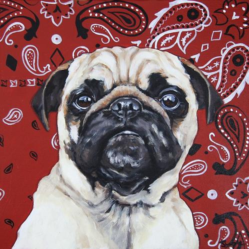 Pug Life Painting - 12x12