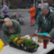 Plant sale annuals