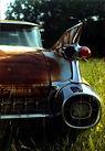 Michael Fulvimari - Beauty in Rust!.jpg