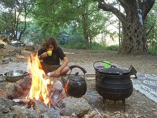 מחנה הנוער שומרי הגן- עץ זית עתיק, תה פלחי תפוח, נער משכים קום.