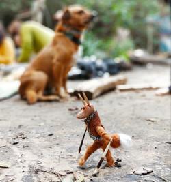 סנשי הכלב ושושקו השועל