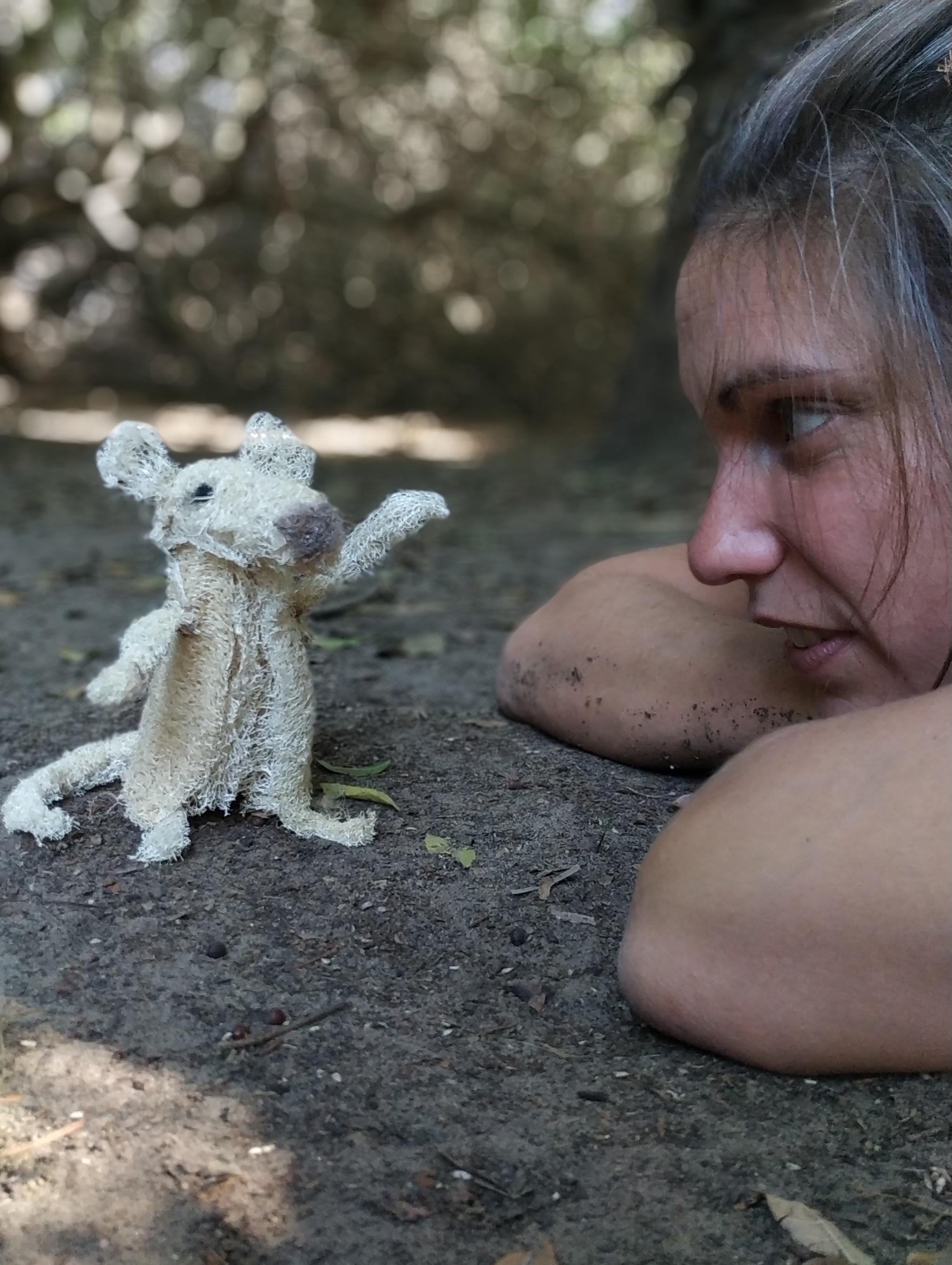 עדידי והעכברון