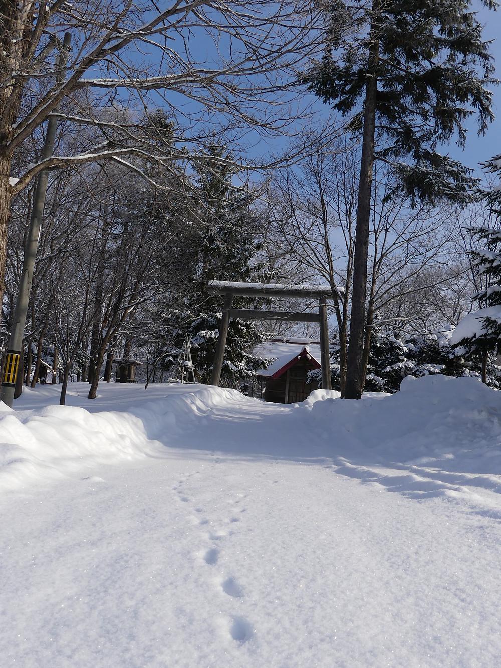 キツネ?の足跡と佐久神社