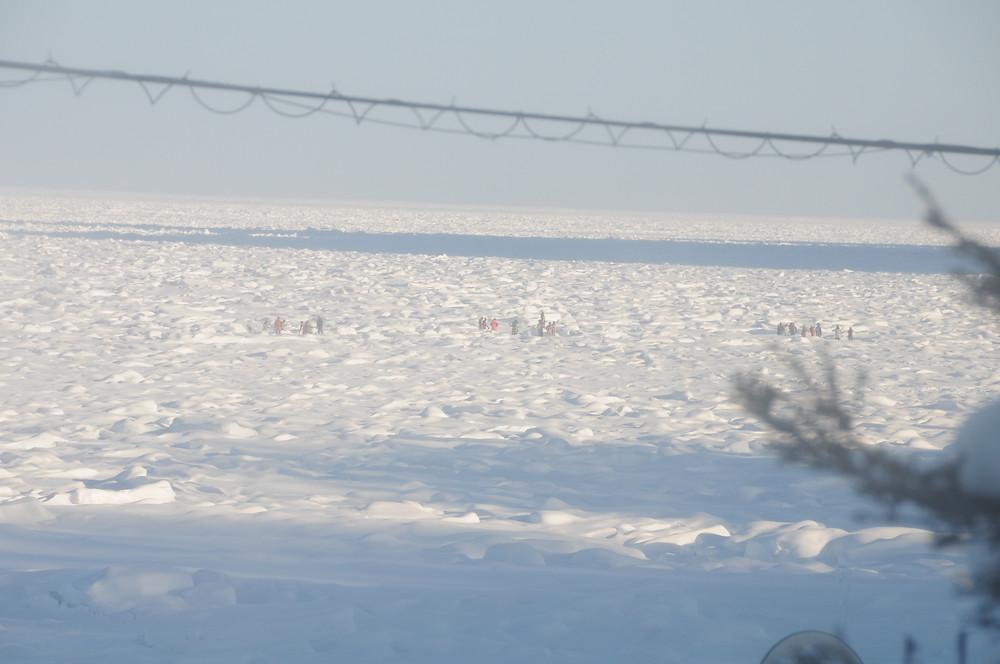 知床ウトロの流氷ウォーク(たくさんの人が写っているのですが)
