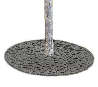 This is a tree ring rubber paver.