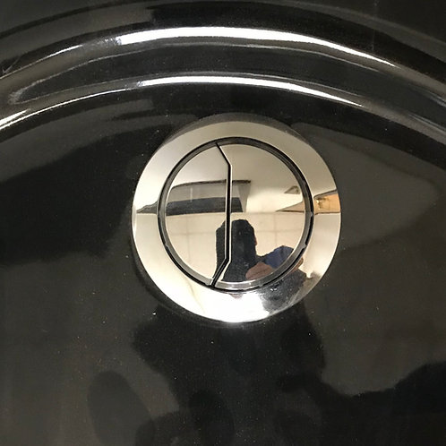 Dual Flush Botton