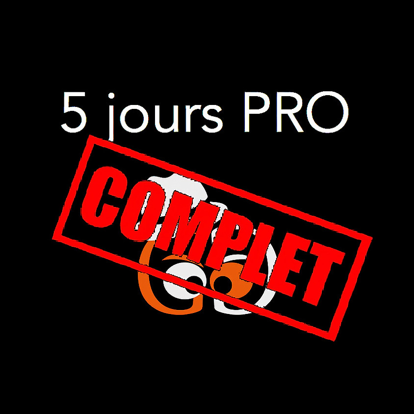 Atelier en Suisse 5 jours (Perroy) - Perfectionnement semaine 22