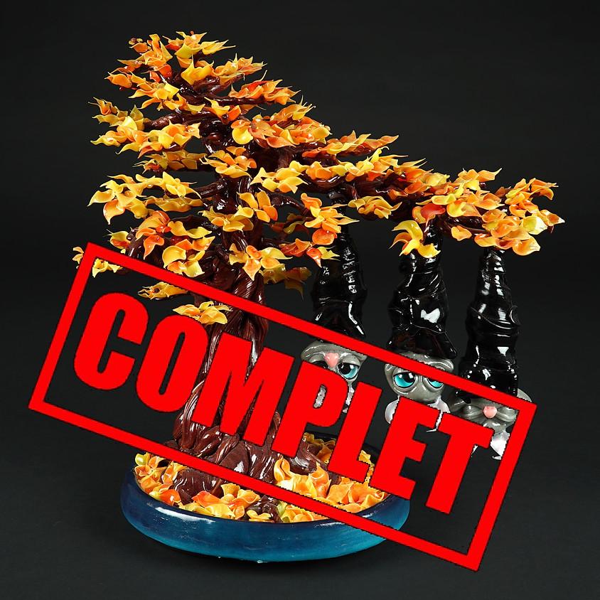 Atelier en Suisse 2 jours (Perroy) - le bonsai