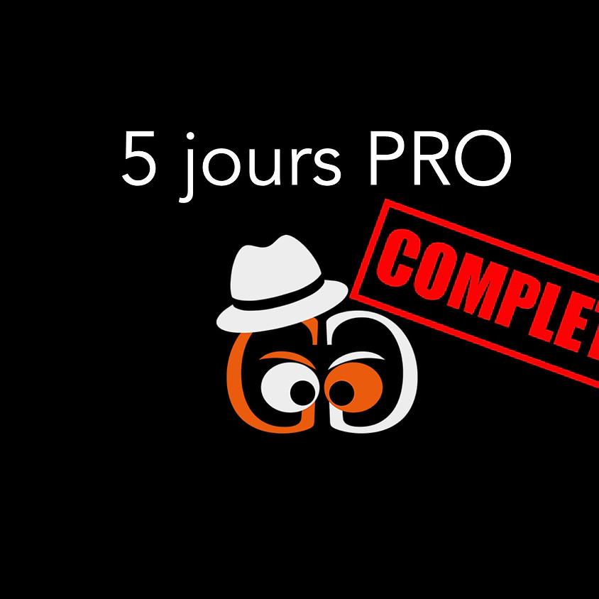 Atelier en Suisse 5 jours (Perroy) - Perfectionnement