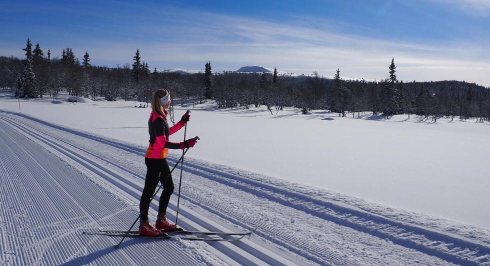 Vinterferie på Ål.jpg