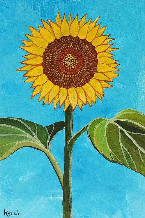 """Sunflower 2"""