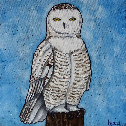 """Snowy Owl 2"""