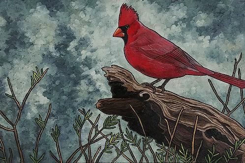 """Northern Cardinal on Fallen Tree"""