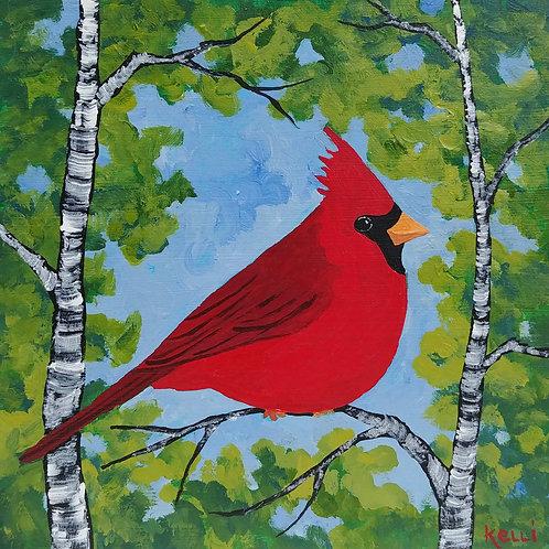 """Cardinal in Birch Trees"""