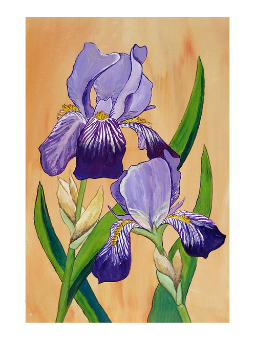 Art Card: Two Purple Iris