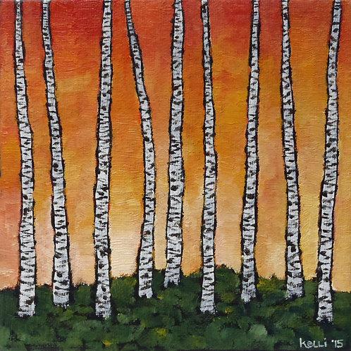 """""""Birch Series Orange 2"""""""