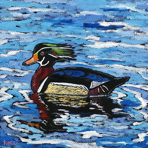 """Drake Wood Duck"""