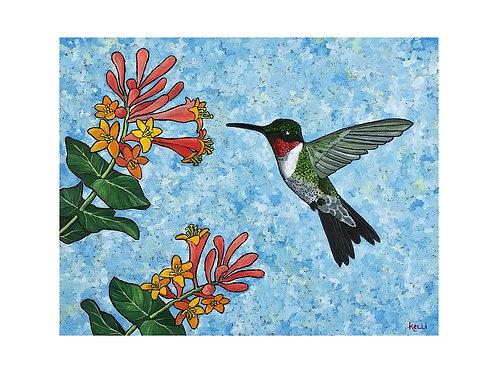 Art Card: Ruby-throated Hummingbird