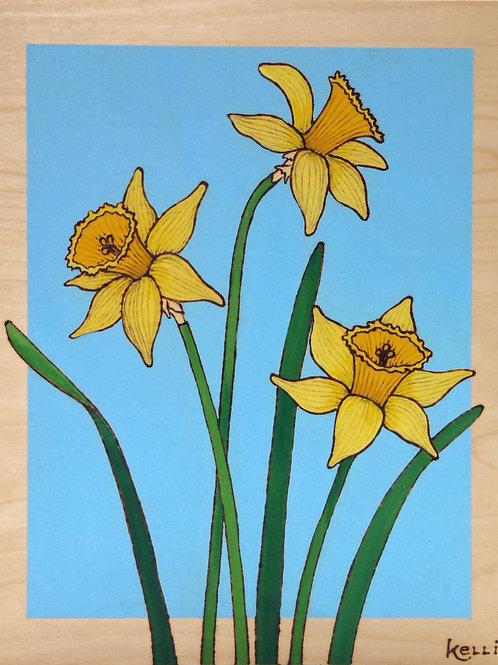 """""""Daffodil Study"""""""