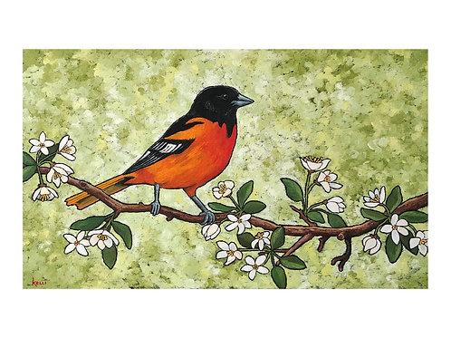 Art Card: Baltimore Oriole on Flowering Tree