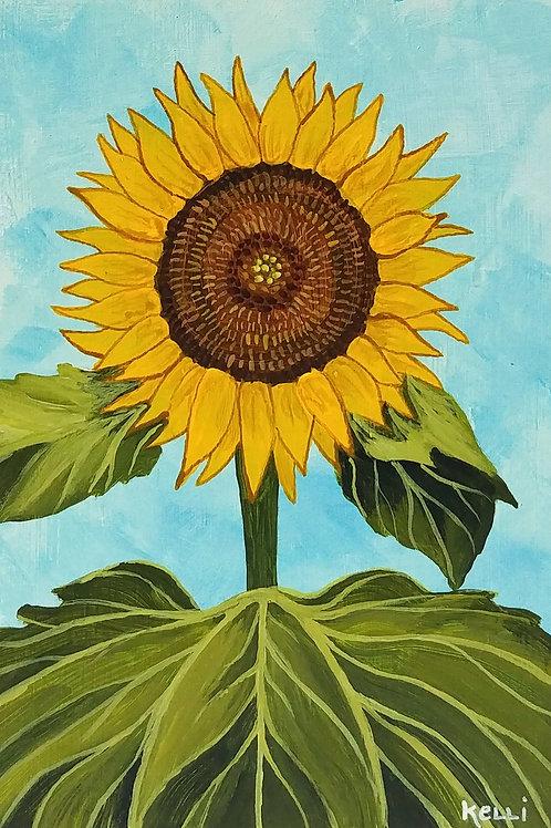 """Sunflower 1"""