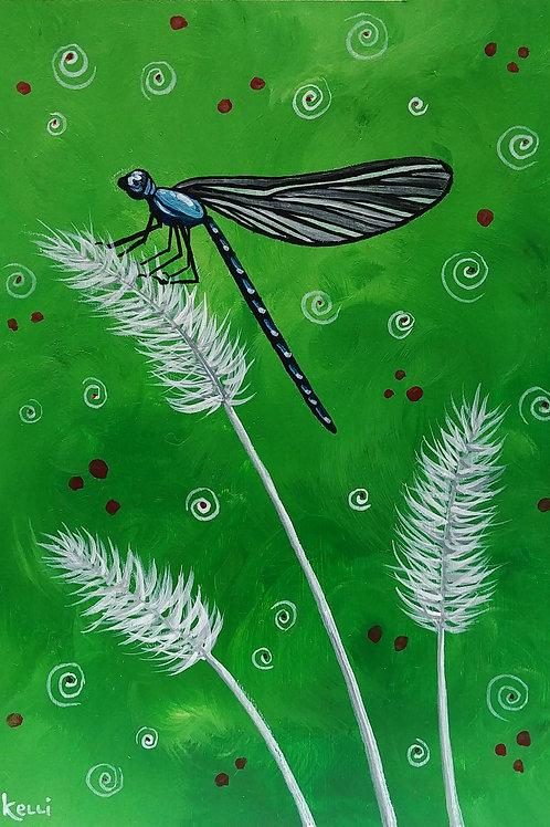 """Dragonfly 4"""