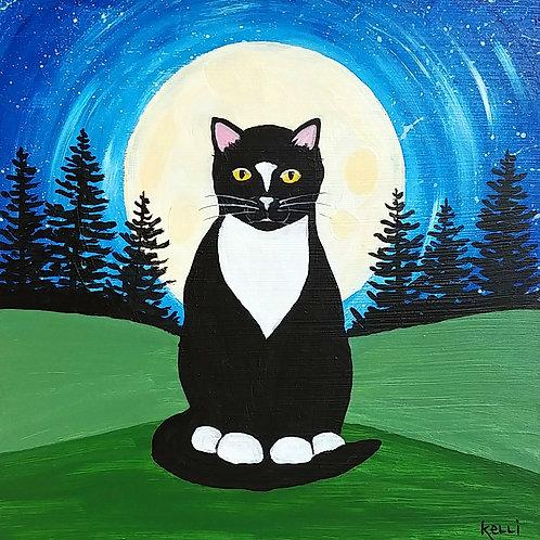 """Tuxedo Cat"""