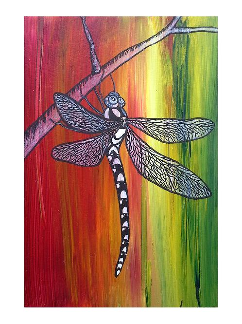 Art Card: Rainbow Dragonfly