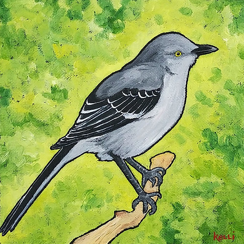 """Northern Mockingbird"""