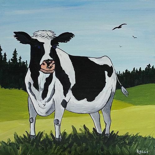 """""""On the Farm 15"""""""