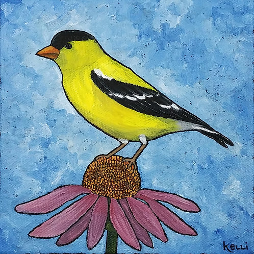 """American Goldfinch 3"""