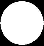 CerclePaper.png