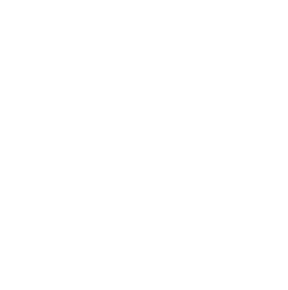 TriangleActivite.png
