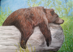 Bear Acrylic Study