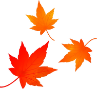 maple-leaves-autumn-leaves-fall-leaves-png-favpng-r4dnh64FCVUHT423NEsDE7NFu.png