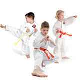 Martial Arts Benefits for Children