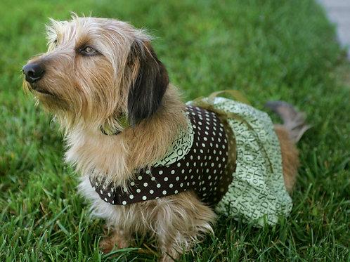 School Daze Ruffle Skirt Dog Dress
