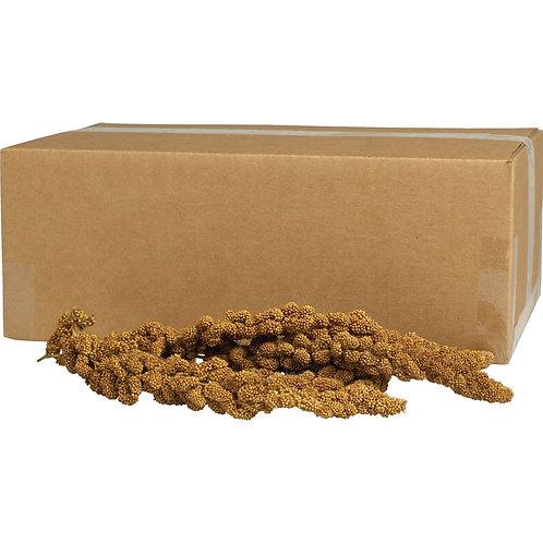 Kaytee Gold Spray Millet Bulk 5lb