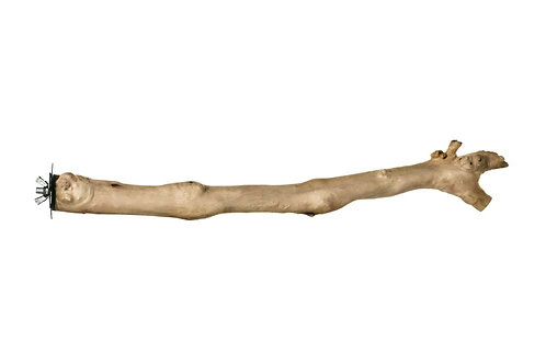 Prevue Pet Products Natural Coffee Wood Straight Perch 18in