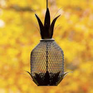 Pineapple Bird Feeder