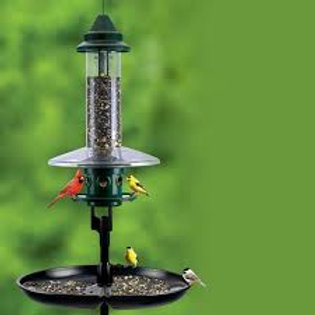 Seed Buster Tray Feeder and Seed Catcher