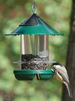 Chickadee Feeder