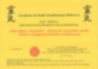 certificat reiki4.png