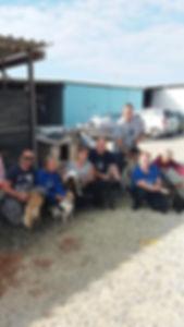 Volunteer at Paralimni Dog Pound
