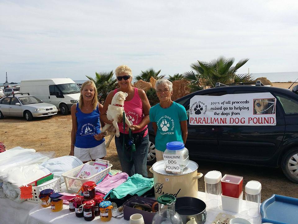 Paralimni Dog Pound Team Cyprus