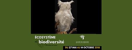 Cover_Musée_Bronze.jpg