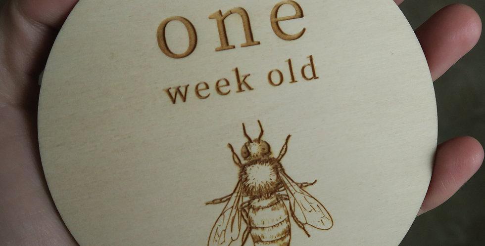 Engraved timber baby milestones, animals, vintage, boho, bee - The Laser Cutting Studio Geelong, Australia