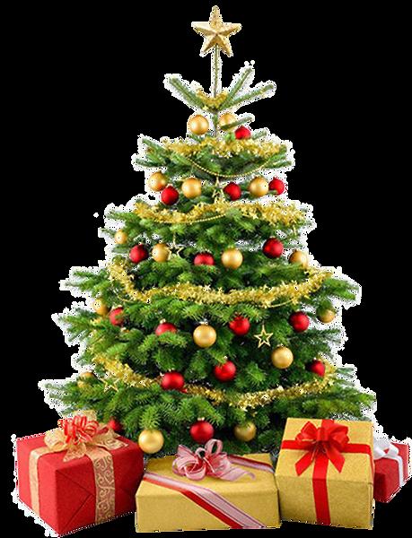 christmas_tree_PNG107.png