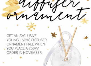 November: Get Your Holiday Shopping Done Early This Year