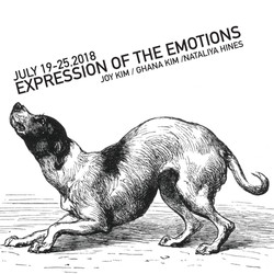 Expression of the Emotions-01